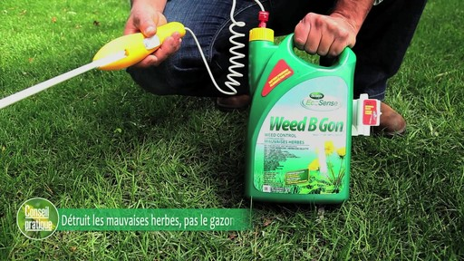 Suppression des mauvaises herbes de la pelouse - image 2 from the video