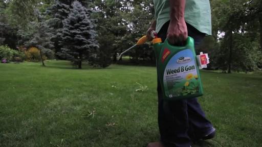 Suppression des mauvaises herbes de la pelouse - image 5 from the video