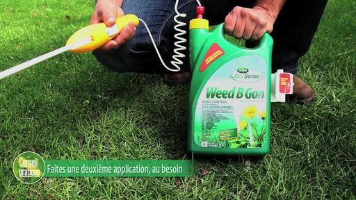 Suppression des mauvaises herbes de la pelouse - image 7 from the video