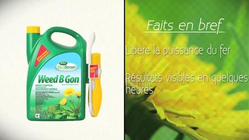 Suppression des mauvaises herbes de la pelouse - image 8 from the video