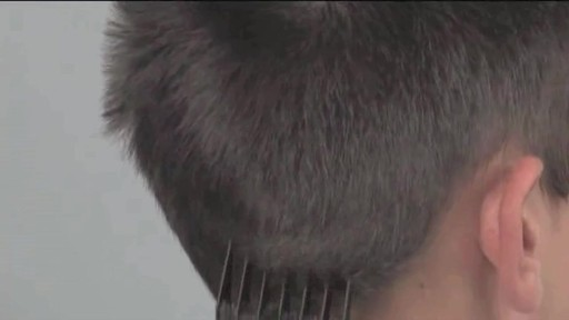 Tondeuse à barbe Wahl à pile - image 3 from the video