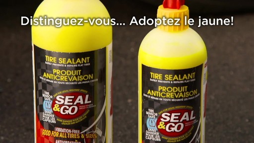 Gonfle-pneus en aérosol Victor Seal and Go - image 8 from the video