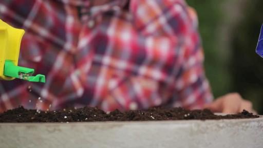 Fertilsation des plantes - image 4 from the video