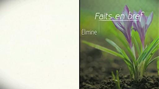 Fertilsation des plantes - image 8 from the video
