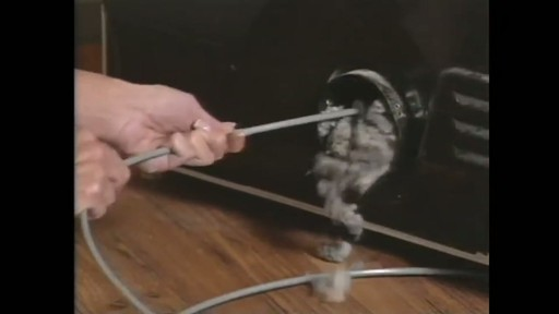 Dryer Lint Removal Kit - image 4 from the video