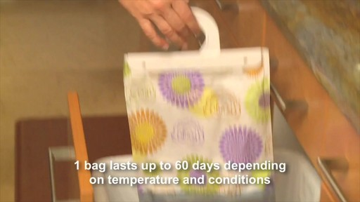 Damp Rid® Hanging Moisture Absorber (Set of 3) - image 5 from the video