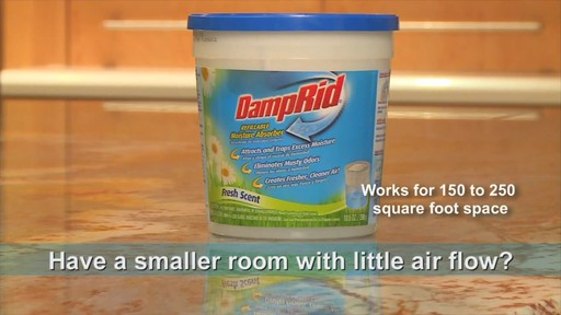 Damp Rid® Hanging Moisture Absorber (Set of 3) - image 7 from the video