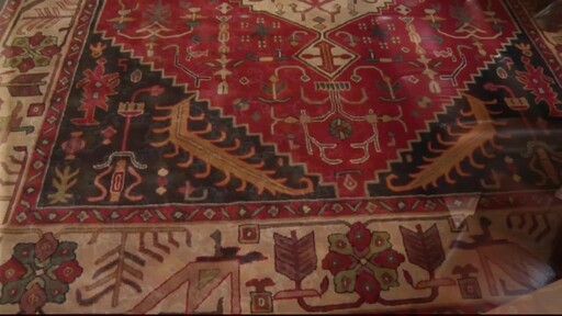 Rugs Educational Video - image 1 from the video