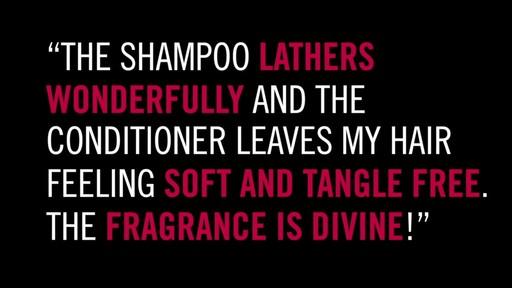 Orlando Pita Argan Haircare Collection - image 4 from the video