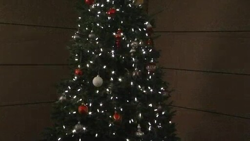 Christmas Tree - image 10 from the video