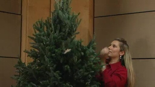 Christmas Tree - image 6 from the video