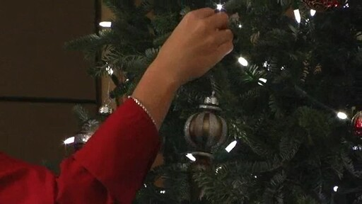 Christmas Tree - image 9 from the video