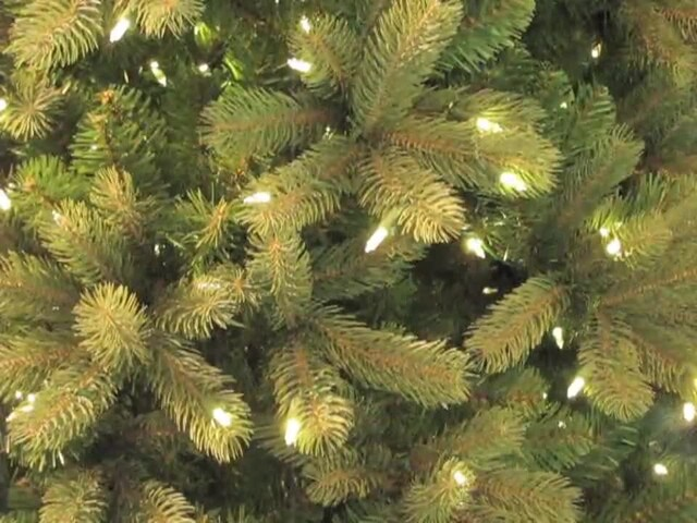 Pre Lit Artificial Bayberry Spruce Tree Dual Light