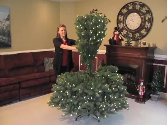 Pre-lit Artificial Bayberry Spruce Tree Dual Light