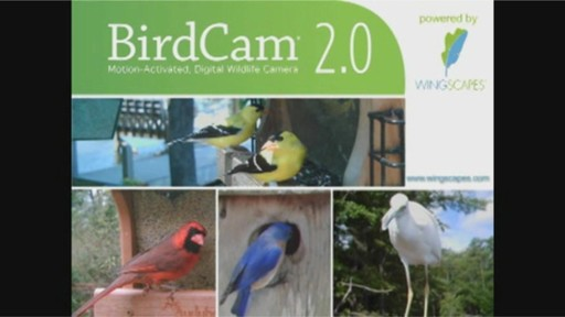 wingscapes birdcam 2 0 welcome to costco wholesale