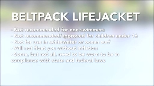 Leashes and Life Jackets - image 10 from the video