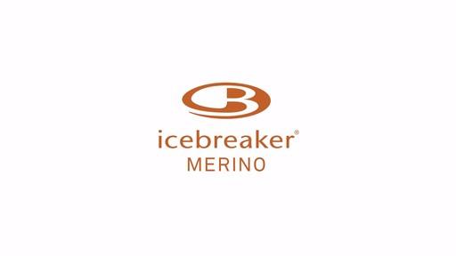 ICEBREAKER Men's Sierra Full-Zip - image 1 from the video