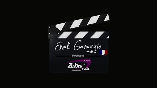 JULBO Zebra Lens - image 1 from the video