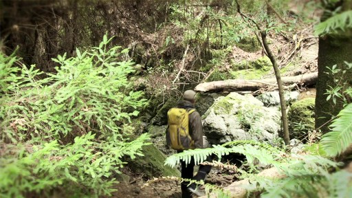 CAMELBAK Vantage Hydration Pack - image 3 from the video