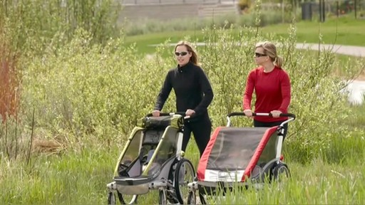 chariot cougar 1 2 bike trailers product eastern. Black Bedroom Furniture Sets. Home Design Ideas