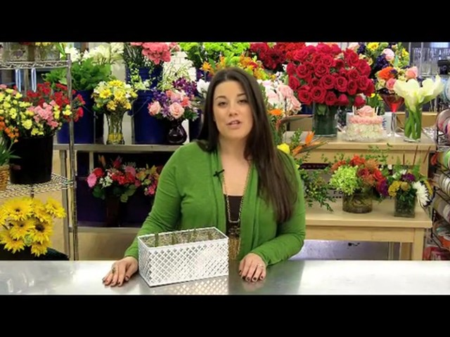 Red Tulip Garden Care & Handling Tips Video - image 2 from the video