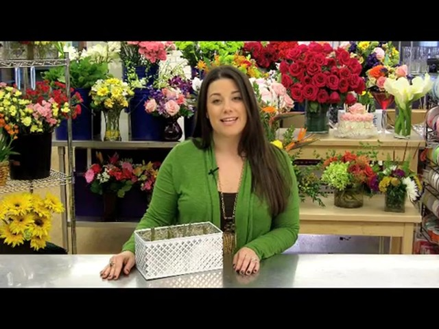 Red Tulip Garden Care & Handling Tips Video - image 3 from the video