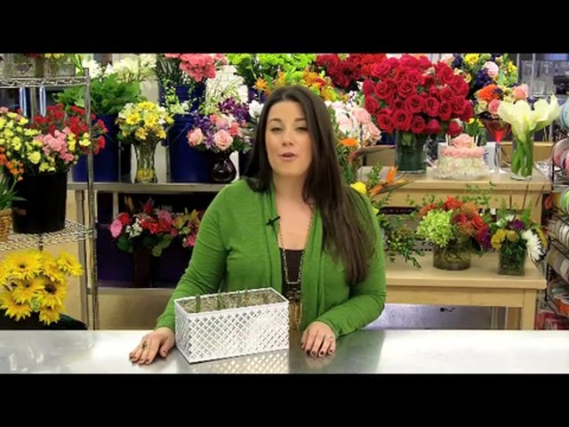 Red Tulip Garden Care & Handling Tips Video - image 8 from the video