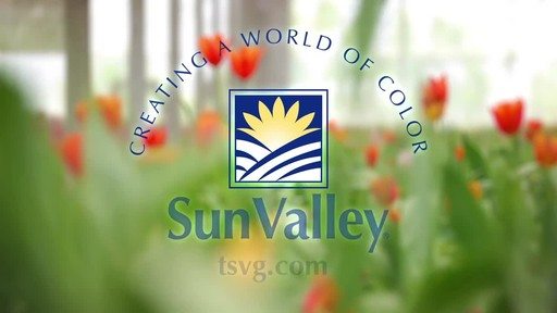 Sunvalley Farms Soil Tulips - image 10 from the video