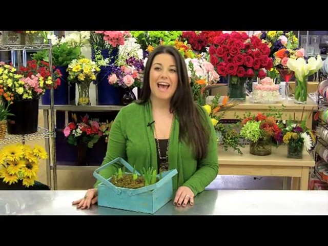 Spring Country Bulb Garden Care & Handling Tips Video - image 2 from the video