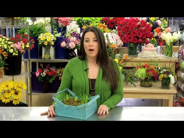 Spring Country Bulb Garden Care & Handling Tips Video - image 6 from the video