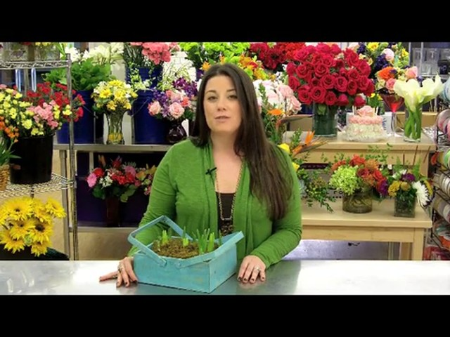 Spring Country Bulb Garden Care & Handling Tips Video - image 7 from the video