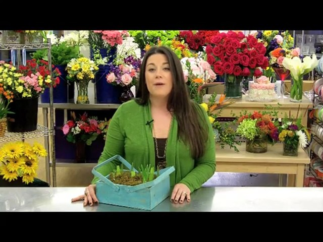 Spring Country Bulb Garden Care & Handling Tips Video - image 8 from the video