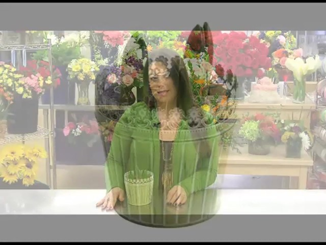 Heavenly Hyacinth Garden Care & Handling Tips - image 3 from the video