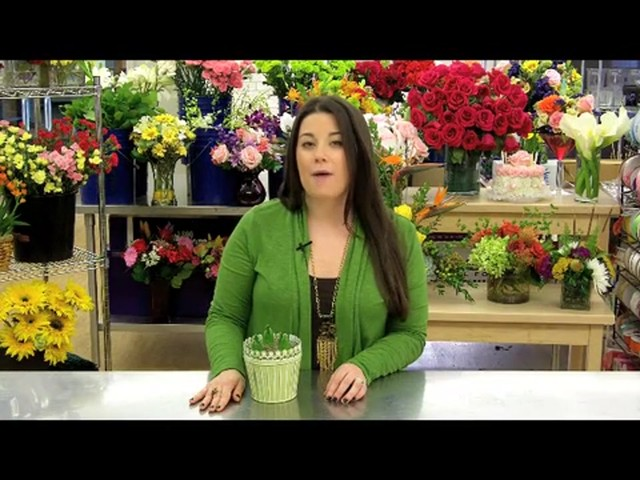 Heavenly Hyacinth Garden Care & Handling Tips - image 5 from the video