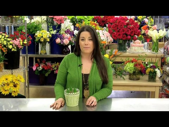 Heavenly Hyacinth Garden Care & Handling Tips - image 6 from the video