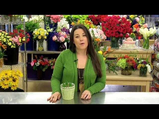 Heavenly Hyacinth Garden Care & Handling Tips - image 8 from the video