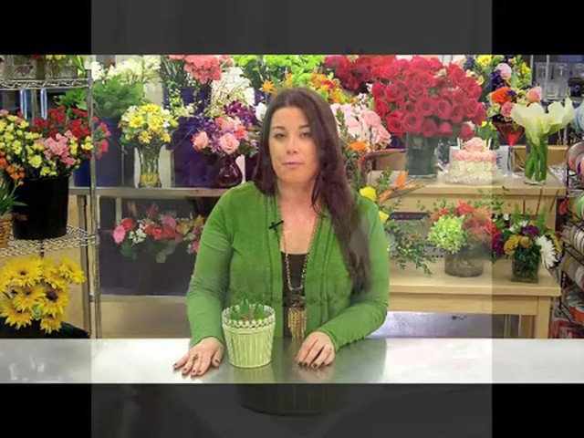 Heavenly Hyacinth Garden Care & Handling Tips - image 9 from the video