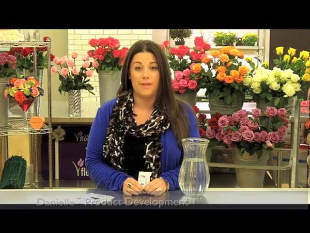 Top 10 Valentines Day Rose Care Tips Countdown  - image 4 from the video