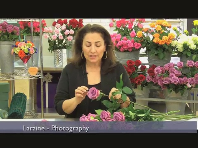 Top 10 Valentines Day Rose Care Tips Countdown  - image 5 from the video