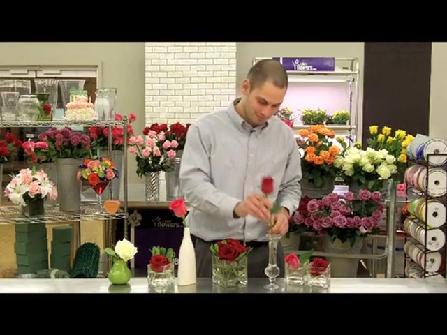 Top 10 Valentines Day Rose Care Tips Countdown  - image 9 from the video