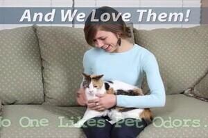 Pet Odor Eliminator 187 Listpageresources 187 Petco Video